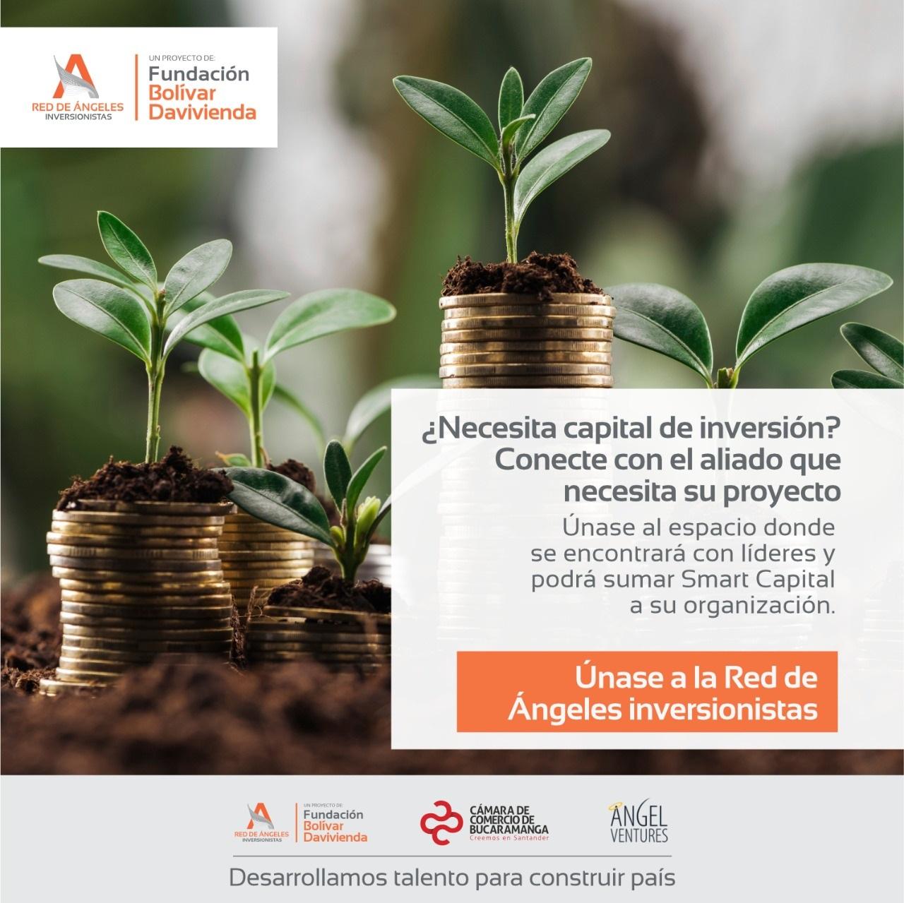 La Red de Ángeles Inversionistas, una alternativa exitosa para potencializar los emprendimientos colombianos